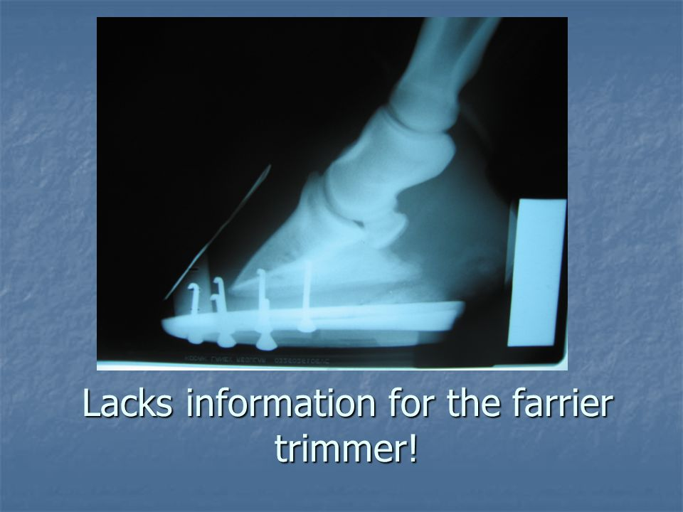 Lacks information for the farrier trimmer!