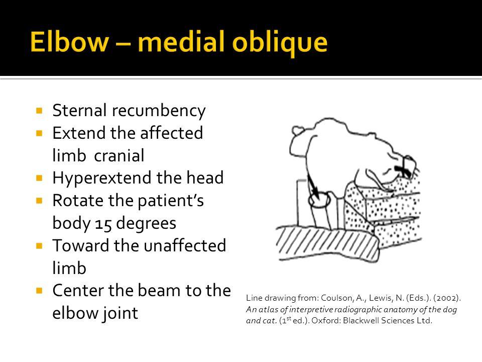Elbow – medial oblique Sternal recumbency