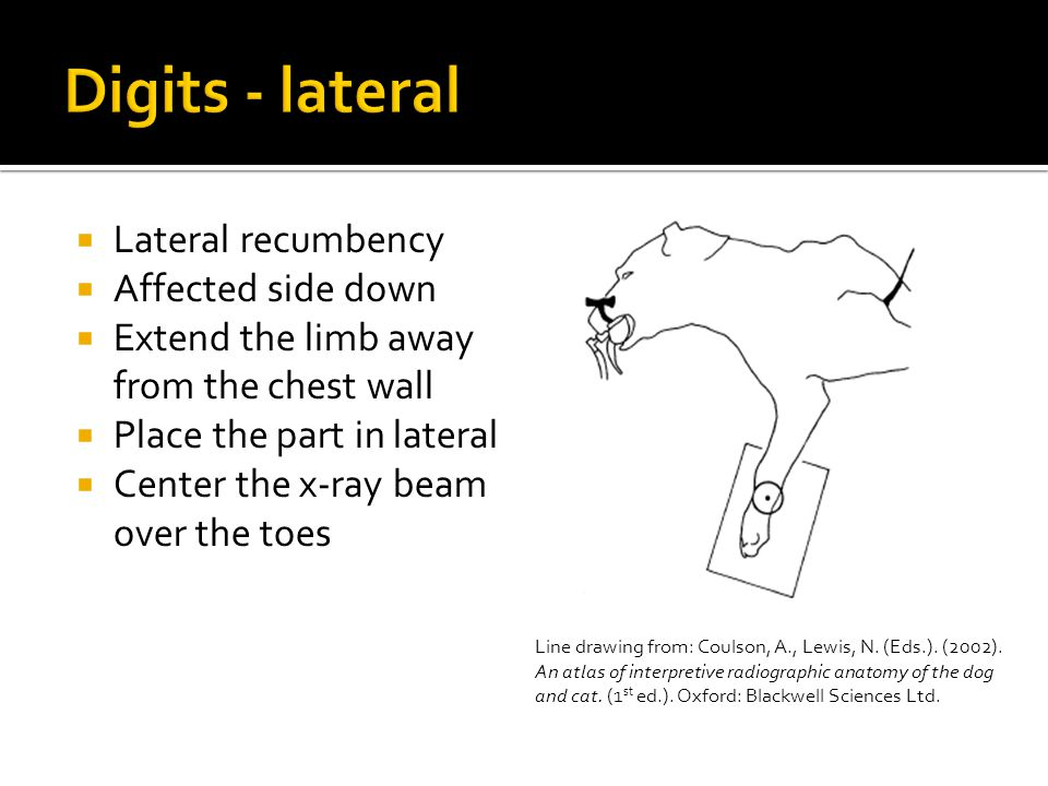 Digits - lateral Lateral recumbency Affected side down