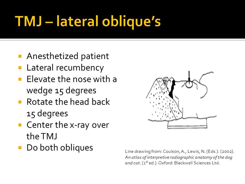 TMJ – lateral oblique's
