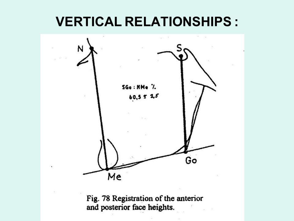 VERTICAL RELATIONSHIPS :