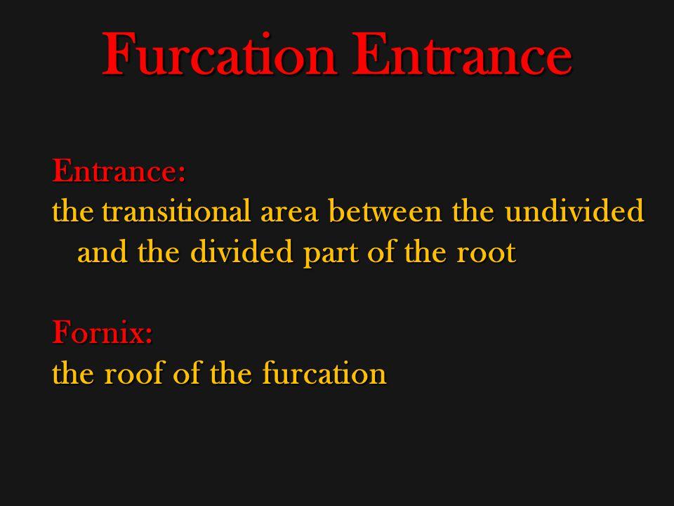 Furcation Entrance Entrance: