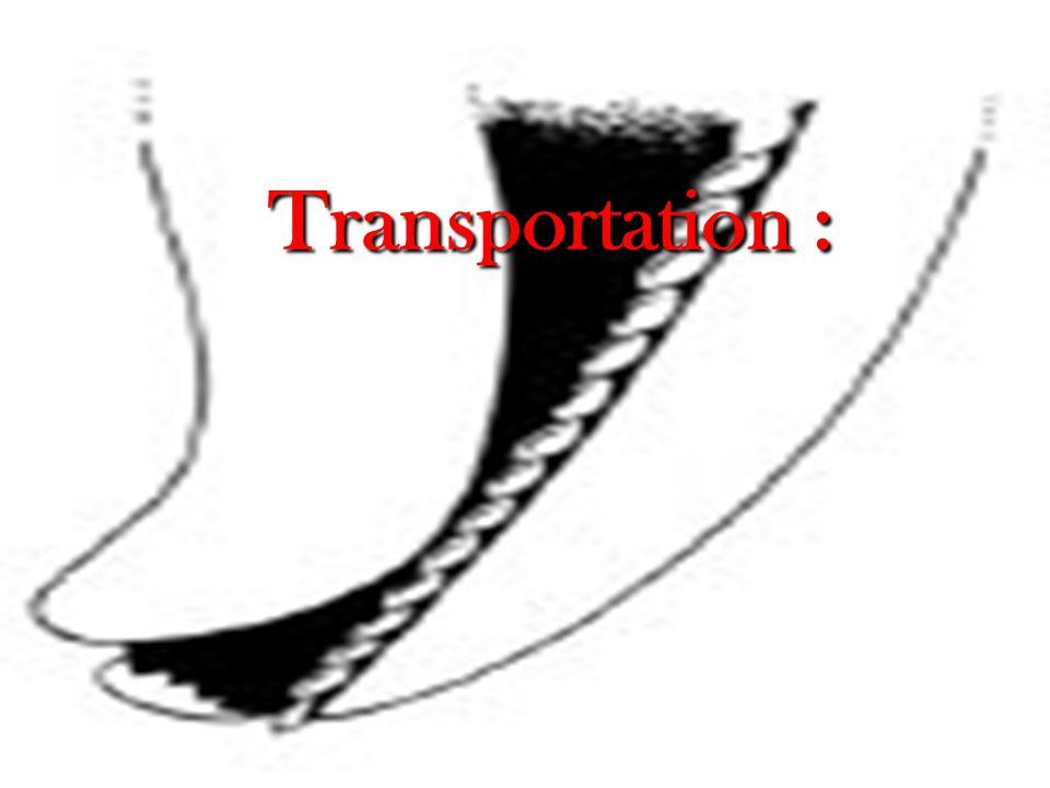 Transportation :