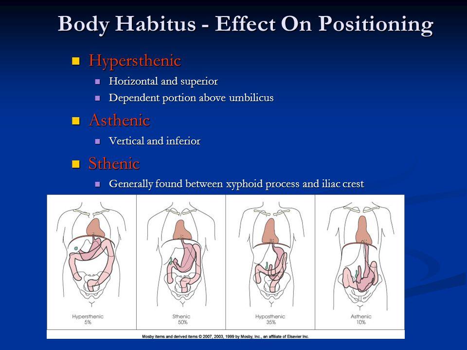 Body Habitus - Effect On Positioning