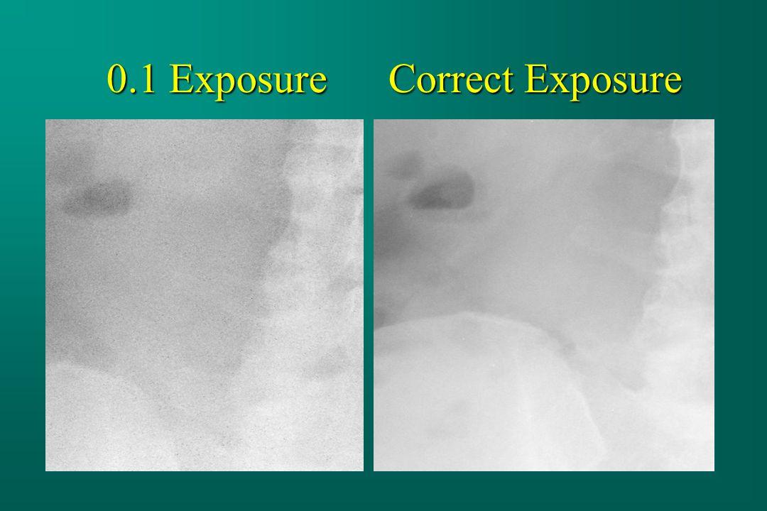 0.1 Exposure Correct Exposure