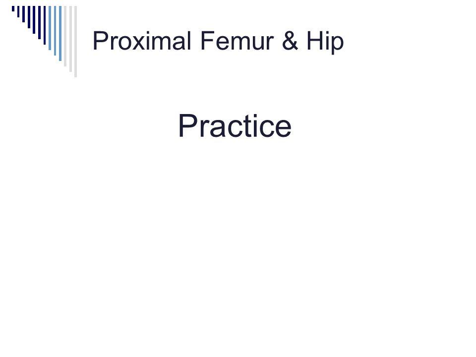 Proximal Femur & Hip Practice