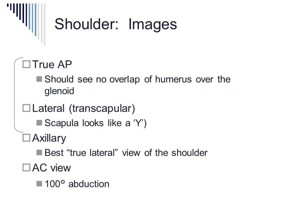 Shoulder: Images True AP Lateral (transcapular) Axillary AC view