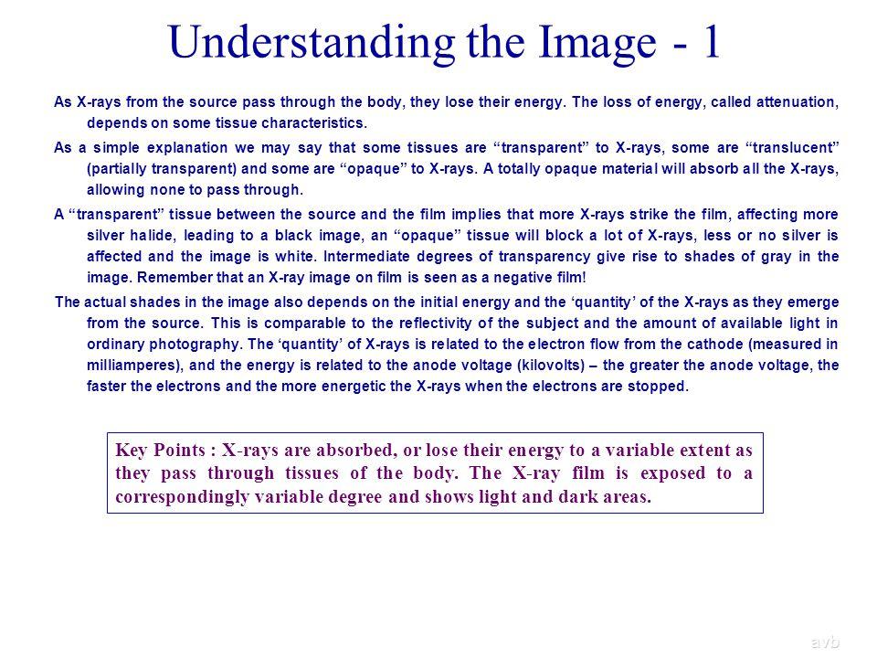 Understanding the Image - 1