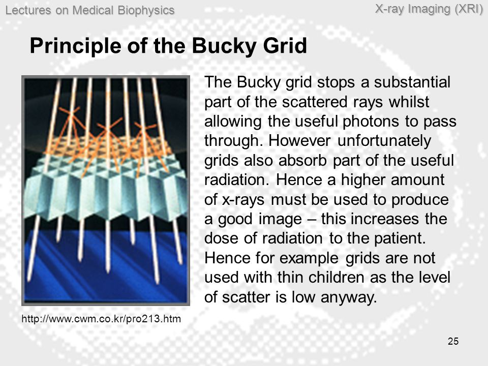 Principle of the Bucky Grid