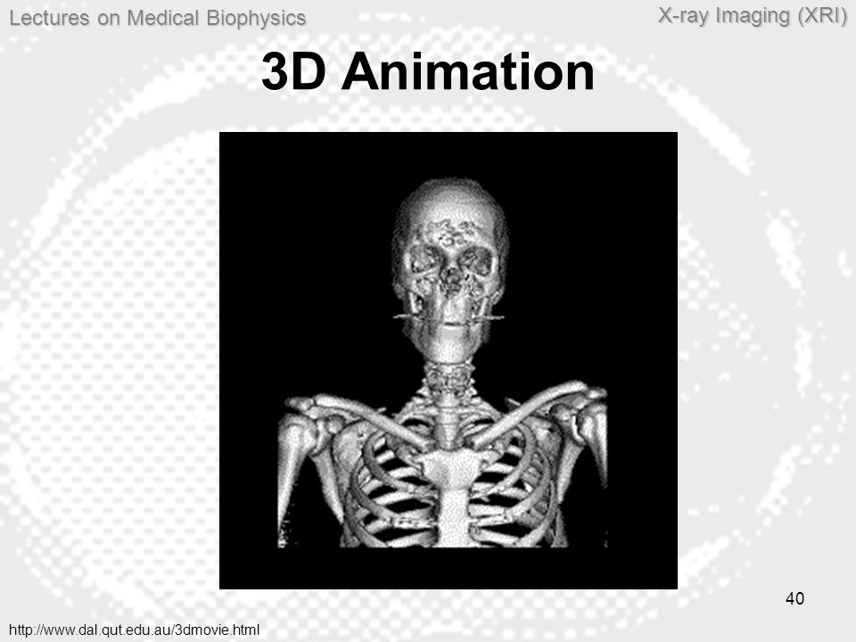3D Animation http://www.dal.qut.edu.au/3dmovie.html
