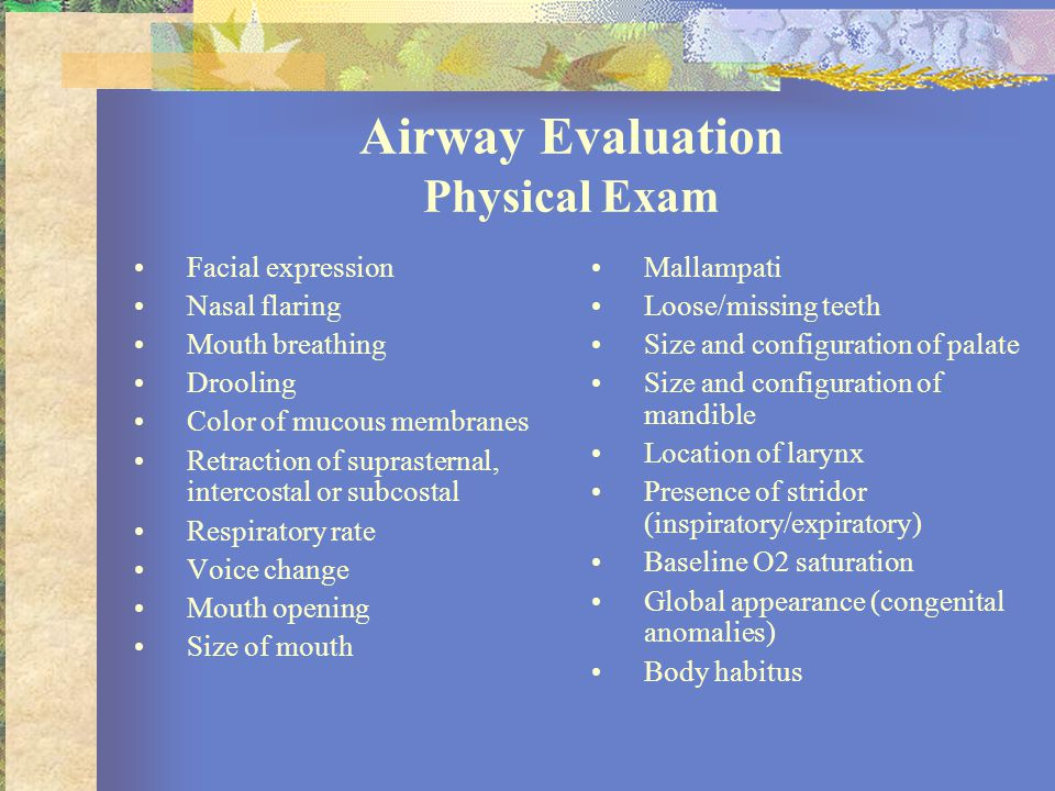 Airway Evaluation Physical Exam