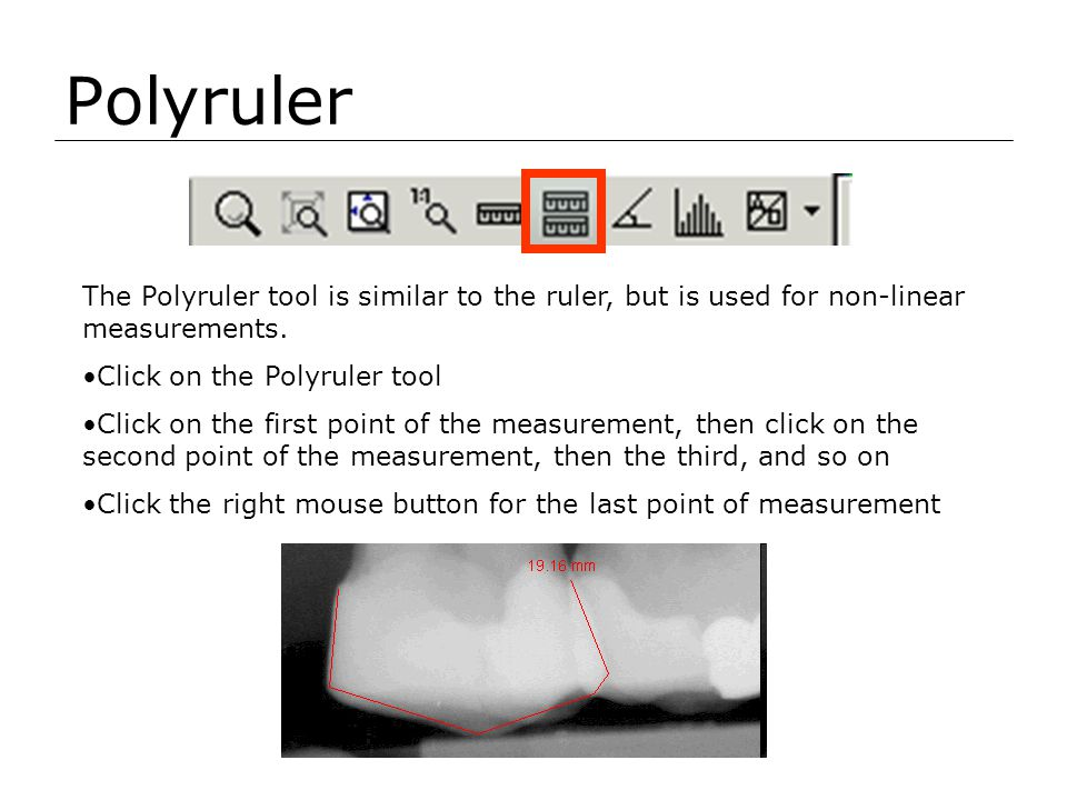 Polyruler The Polyruler tool is similar to the ruler, but is used for non-linear measurements. Click on the Polyruler tool.