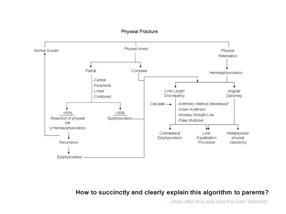 How to succinctly and clearly explain this algorithm to parents