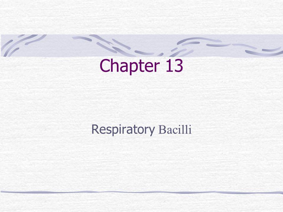 Chapter 13 Respiratory Bacilli