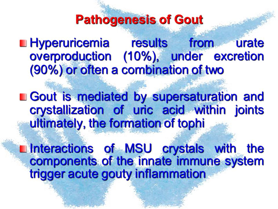 Pathogenesis of Gout Hyperuricemia results from urate overproduction (10%), under excretion (90%) or often a combination of two.