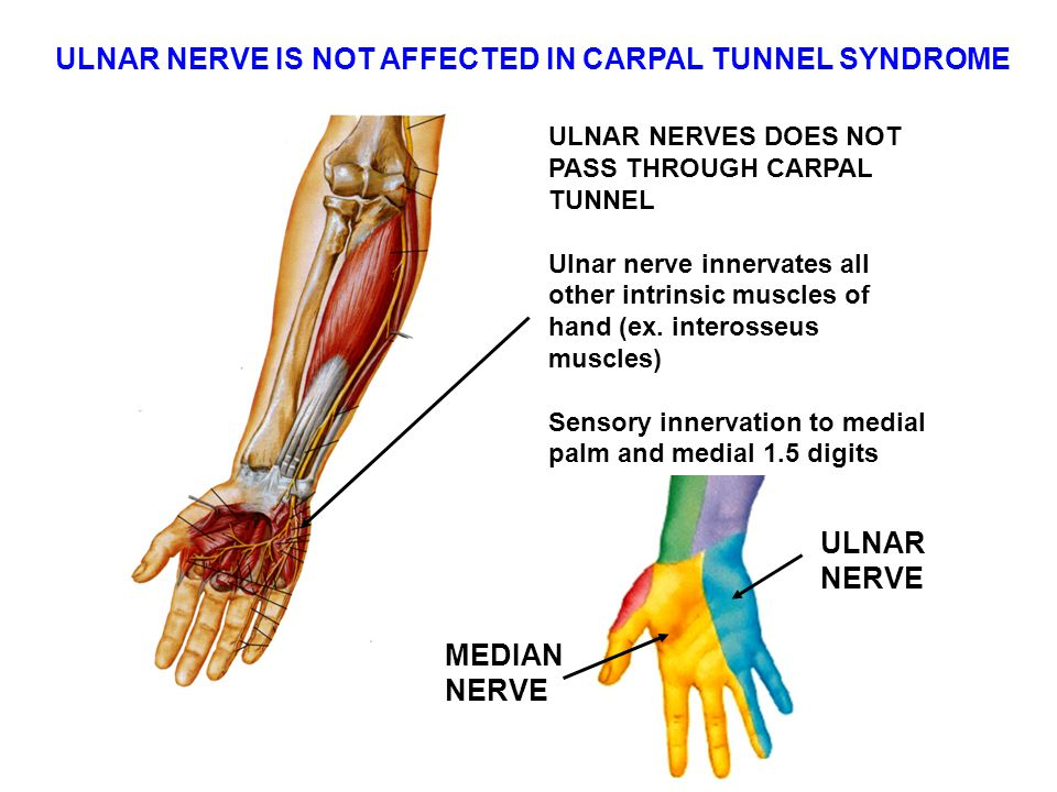 ULNAR NERVE IS NOT AFFECTED IN CARPAL TUNNEL SYNDROME