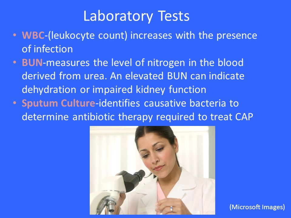 Laboratory Tests WBC-(leukocyte count) increases with the presence of infection.