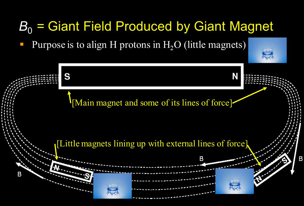B0 = Giant Field Produced by Giant Magnet