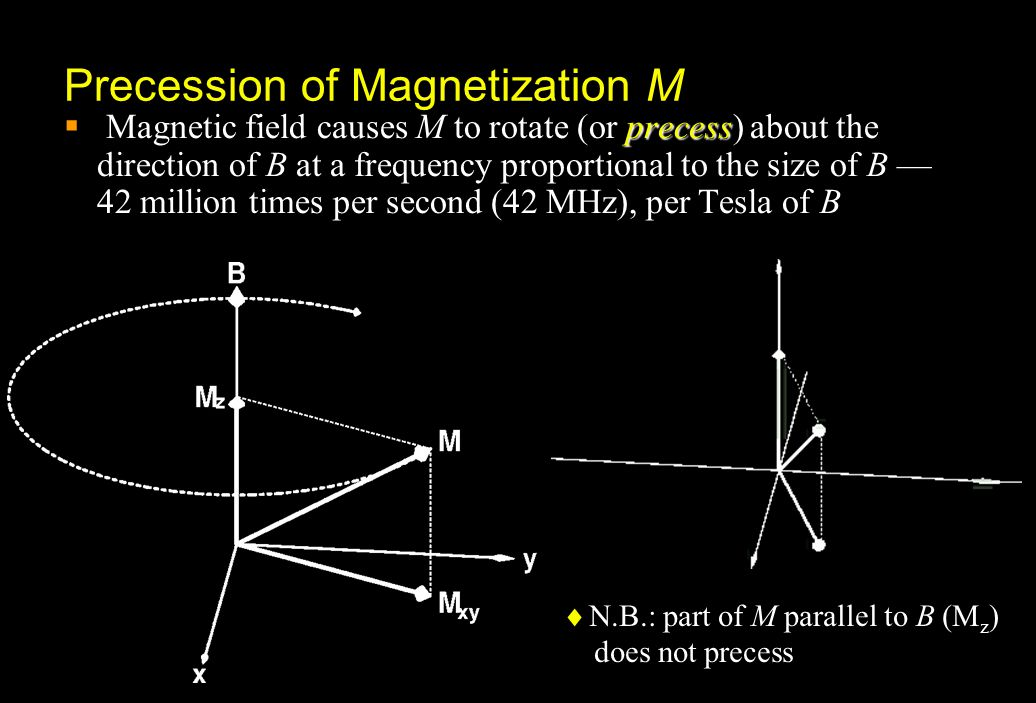 Precession of Magnetization M