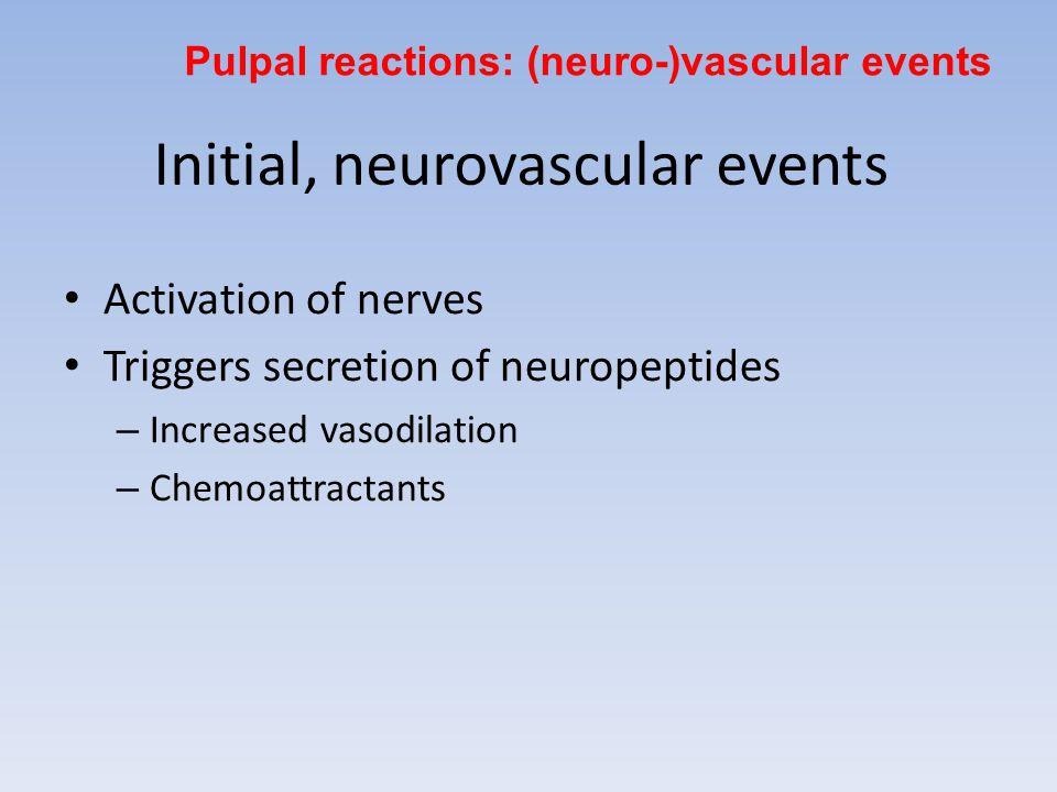 Initial, neurovascular events