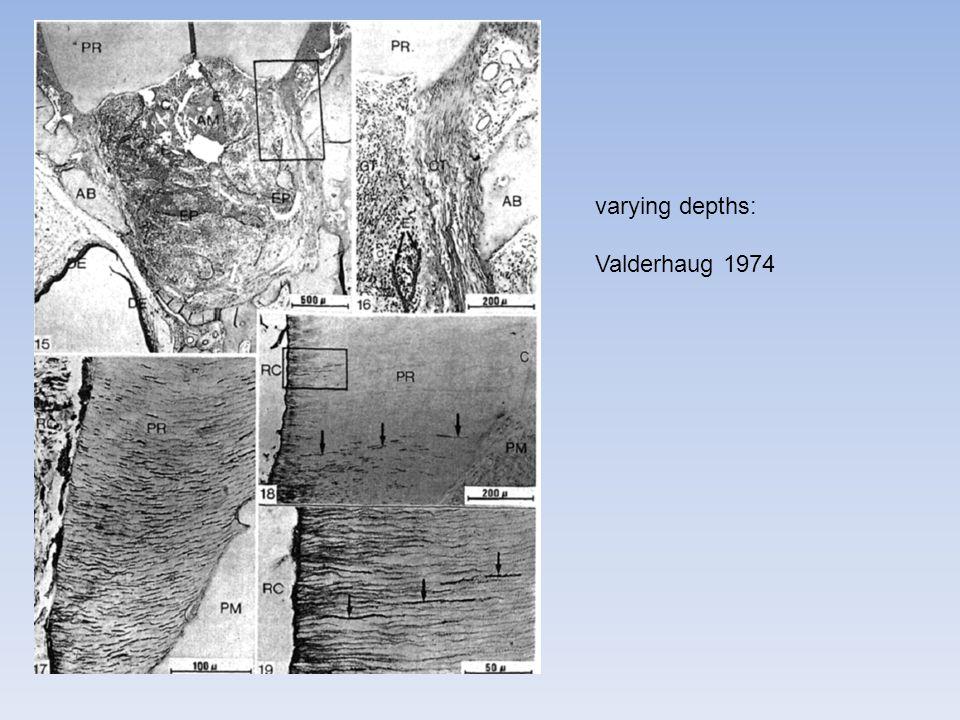 varying depths: Valderhaug 1974