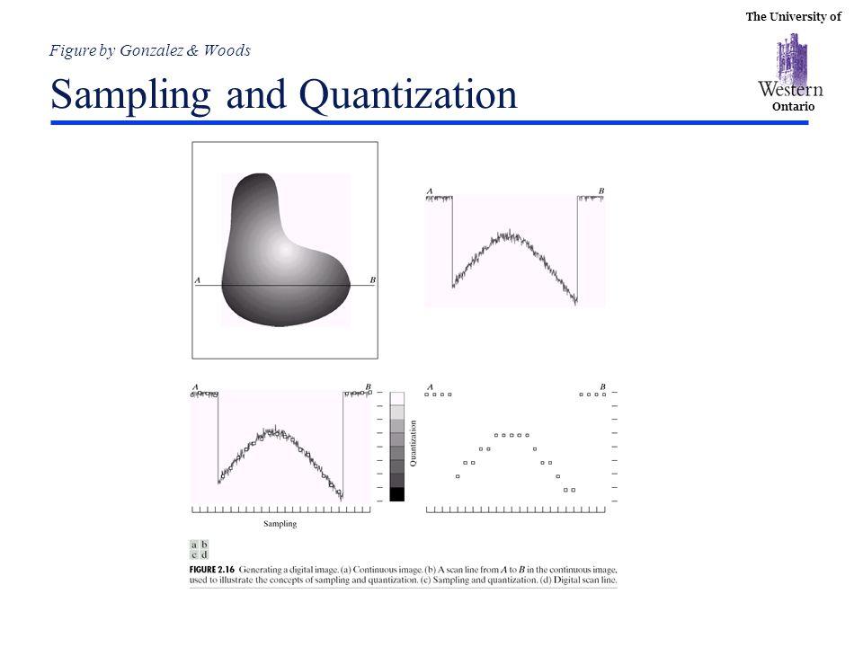 Figure by Gonzalez & Woods Sampling and Quantization
