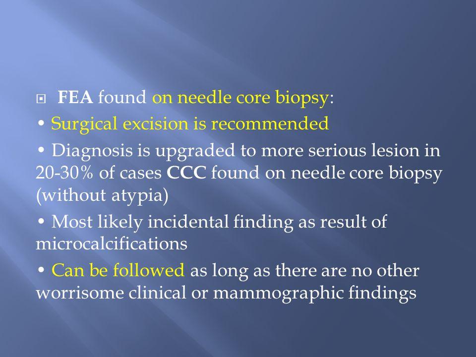 FEA found on needle core biopsy: