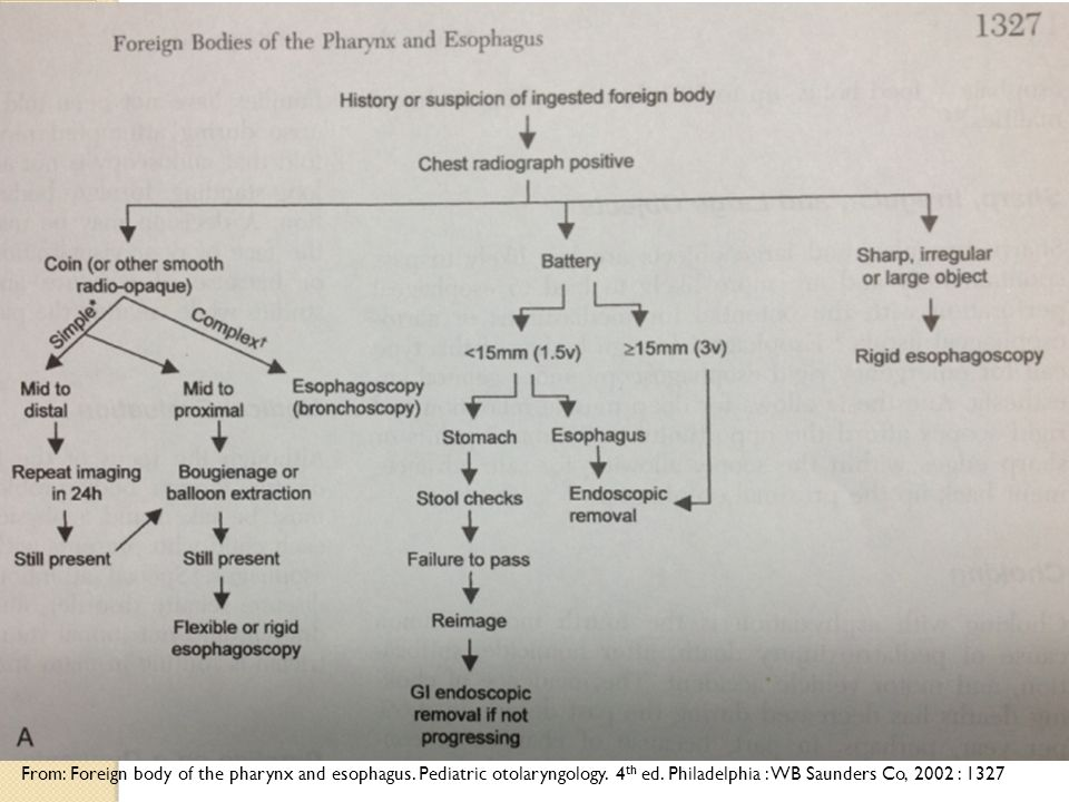 From: Foreign body of the pharynx and esophagus