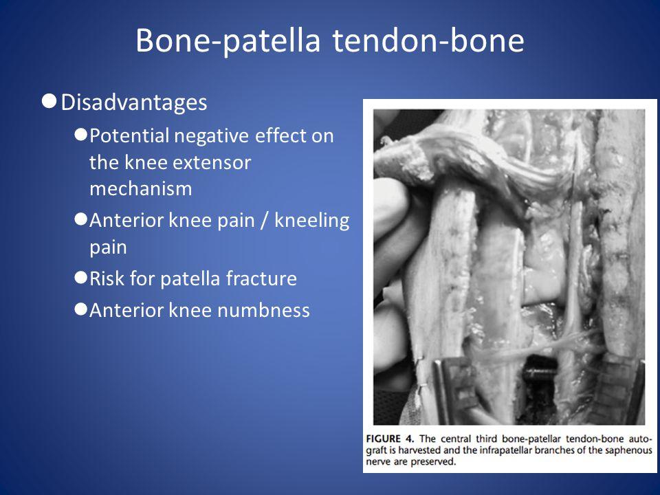 Bone-patella tendon-bone