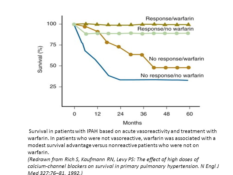 Survival in patients with IPAH based on acute vasoreactivity and treatment with warfarin.