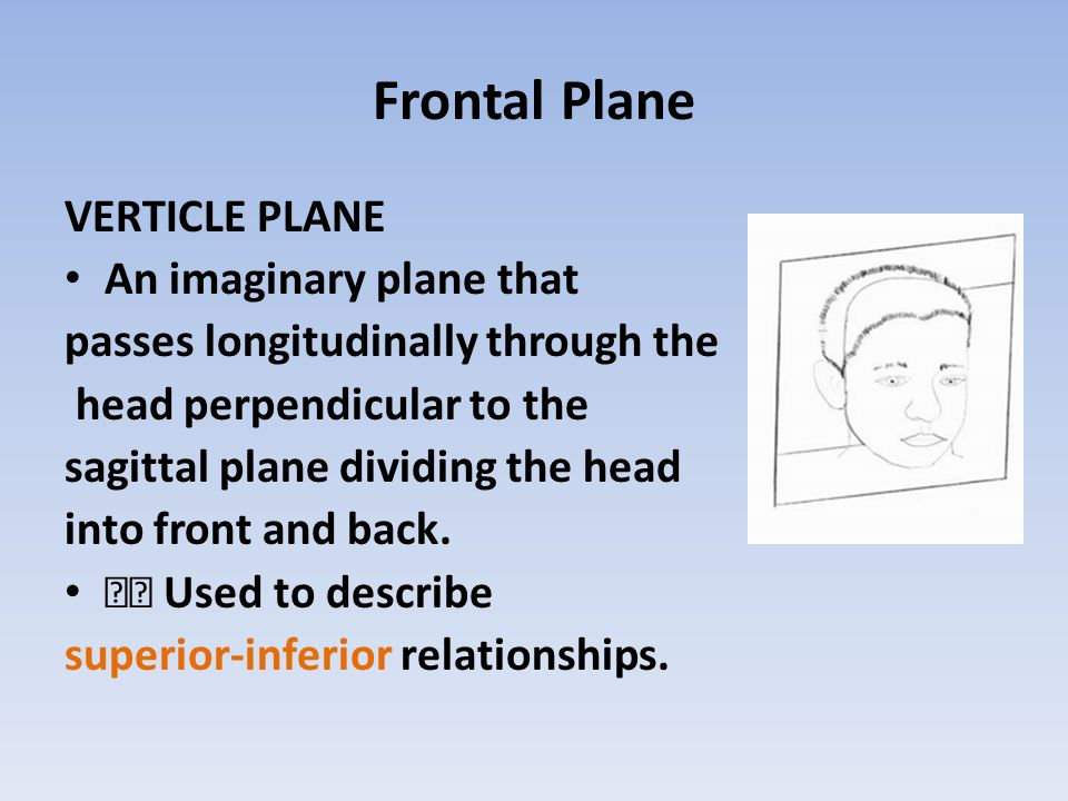 Frontal Plane VERTICLE PLANE An imaginary plane that