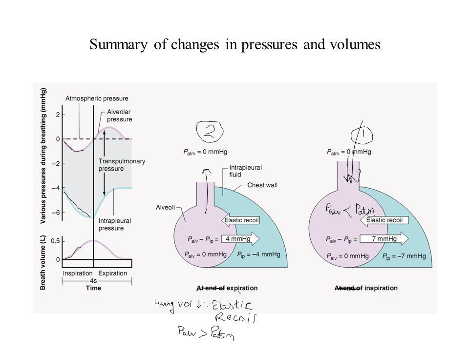 Summary of changes in pressures and volumes
