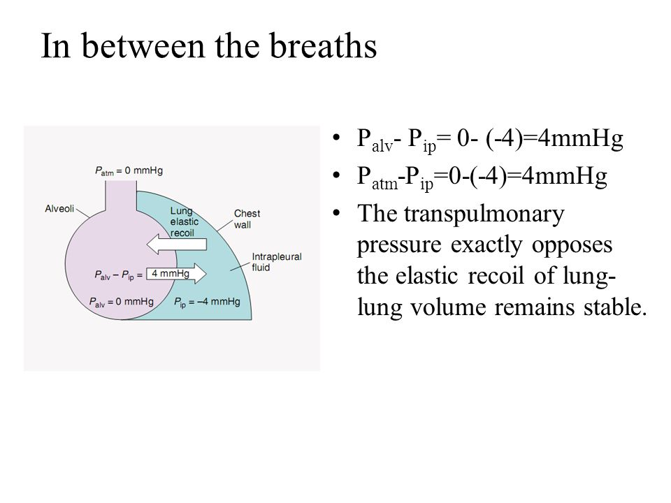 In between the breaths Palv- Pip= 0- (-4)=4mmHg Patm-Pip=0-(-4)=4mmHg