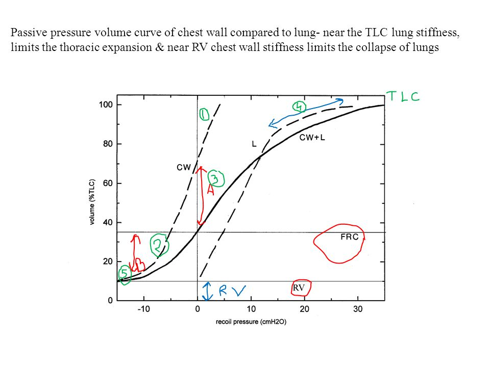 Passive pressure volume curve of chest wall compared to lung- near the TLC lung stiffness, limits the thoracic expansion & near RV chest wall stiffness limits the collapse of lungs