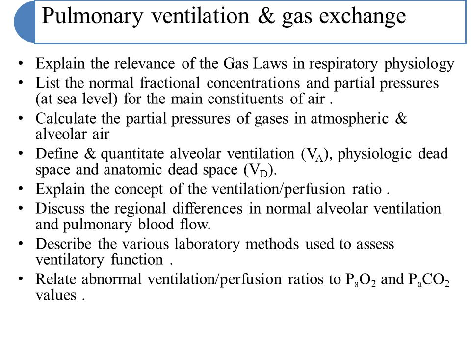Pulmonary ventilation & gas exchange