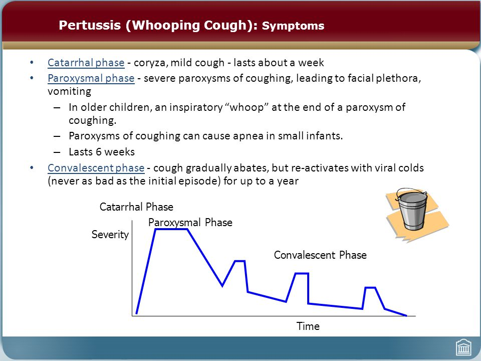 Pertussis (Whooping Cough): Symptoms