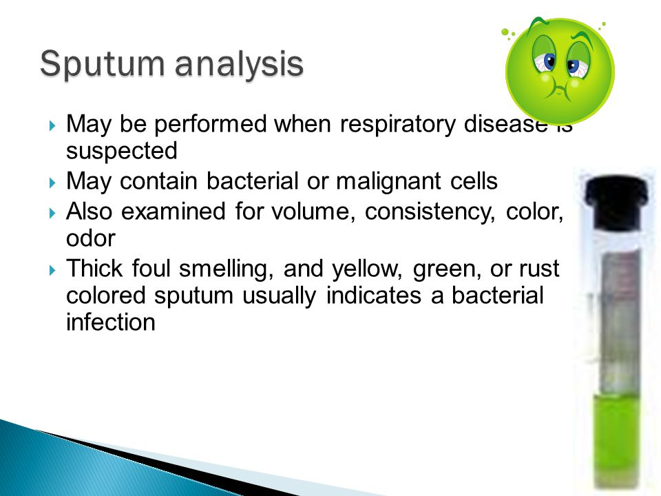 Sputum analysis May be performed when respiratory disease is suspected