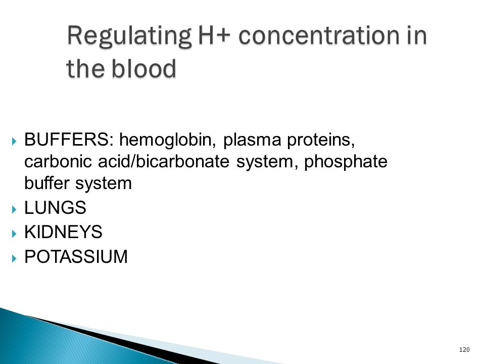 Regulating H+ concentration in the blood