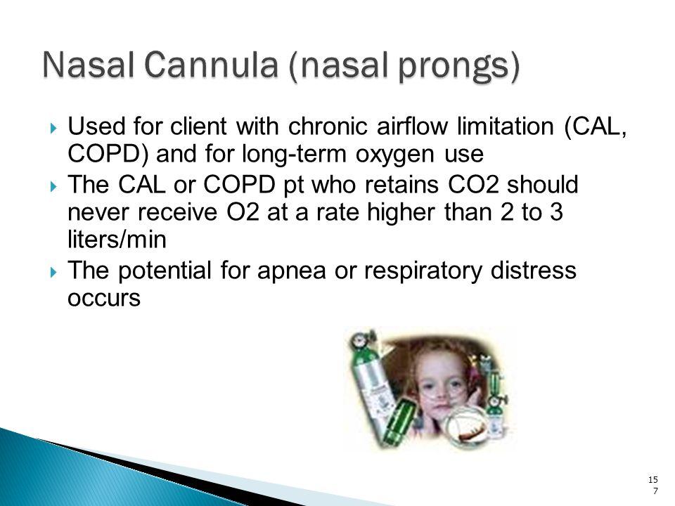 Nasal Cannula (nasal prongs)