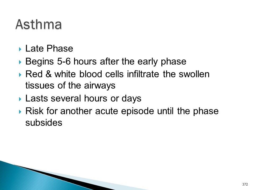 Asthma Late Phase Begins 5-6 hours after the early phase