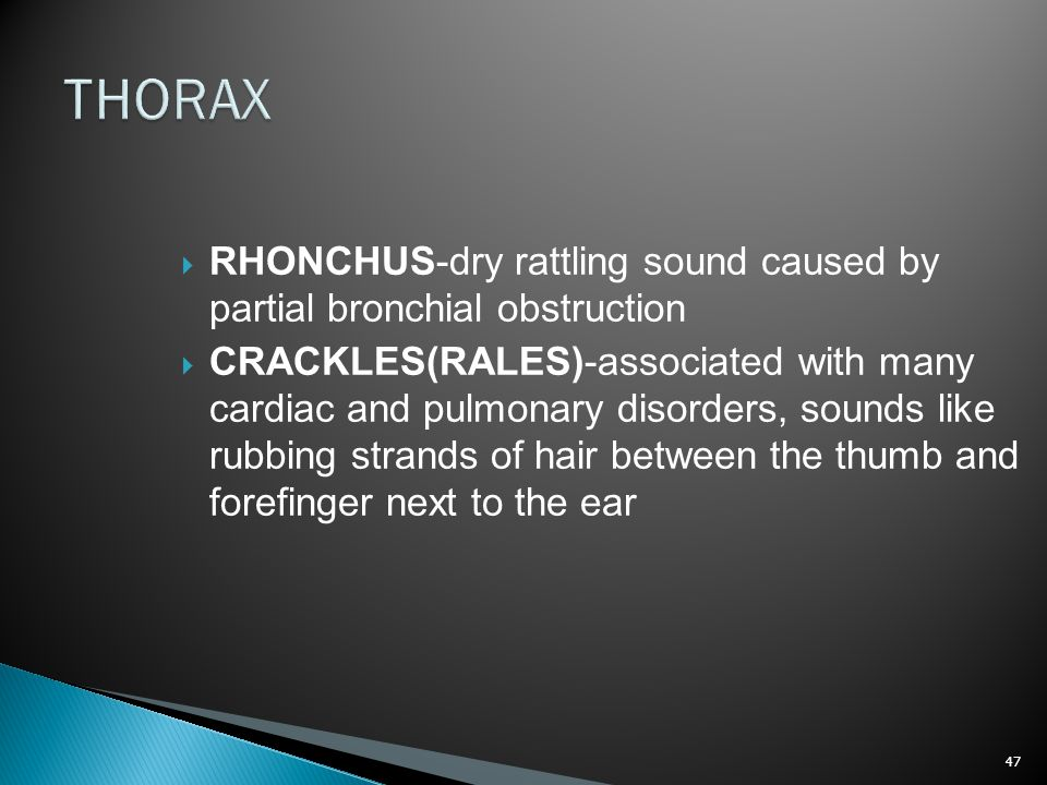 THORAX RHONCHUS-dry rattling sound caused by partial bronchial obstruction.