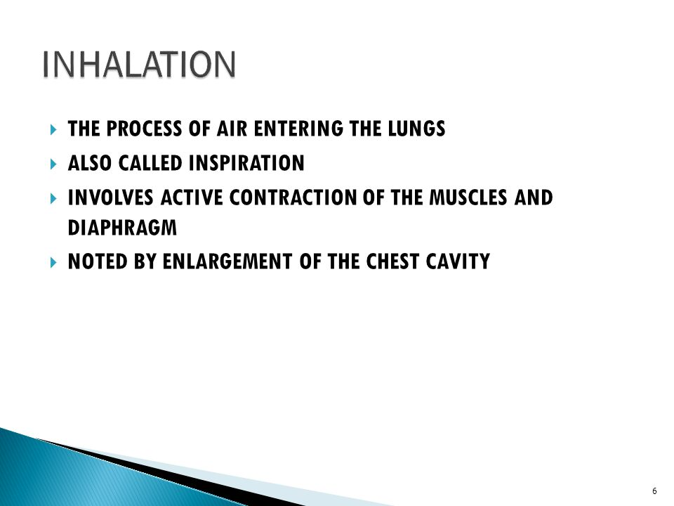 INHALATION THE PROCESS OF AIR ENTERING THE LUNGS