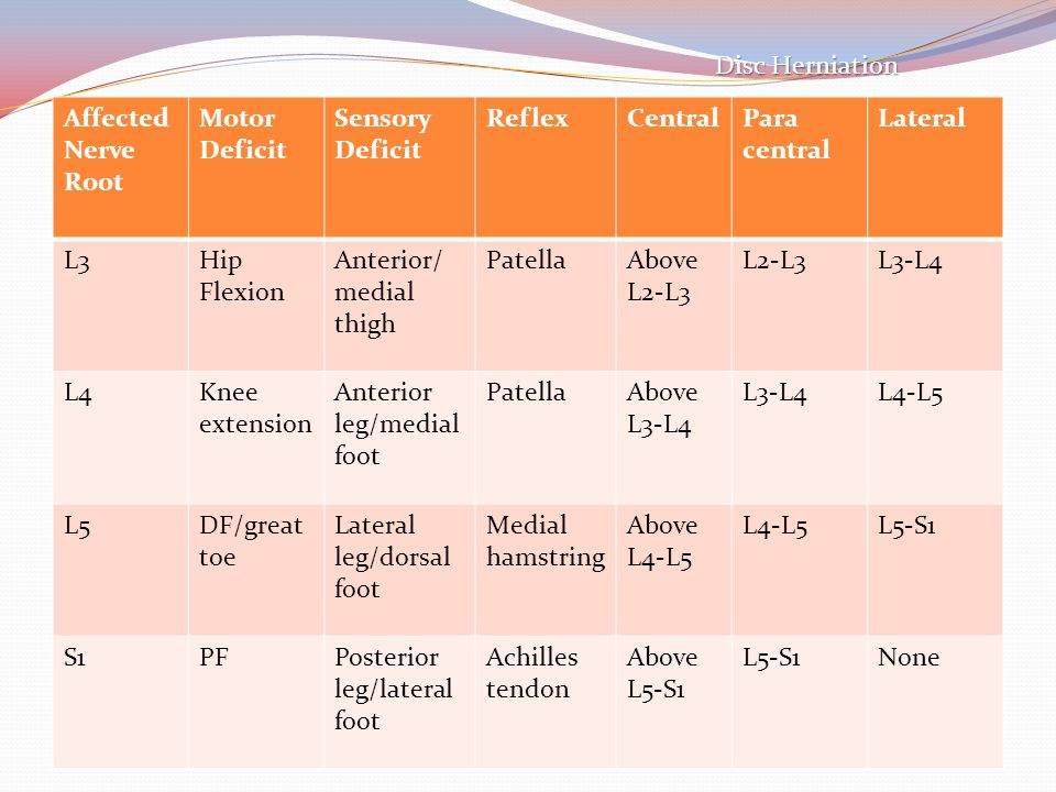 Anterior/medial thigh Patella Above L2-L3 L2-L3 L3-L4