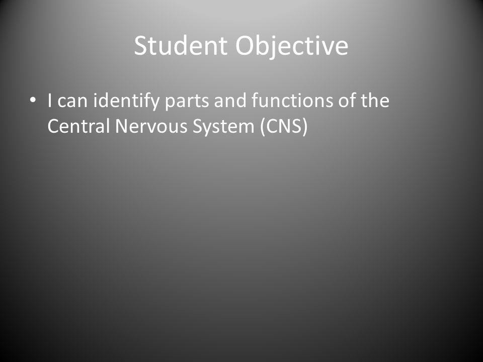 Student Objective I can identify parts and functions of the Central Nervous System (CNS)