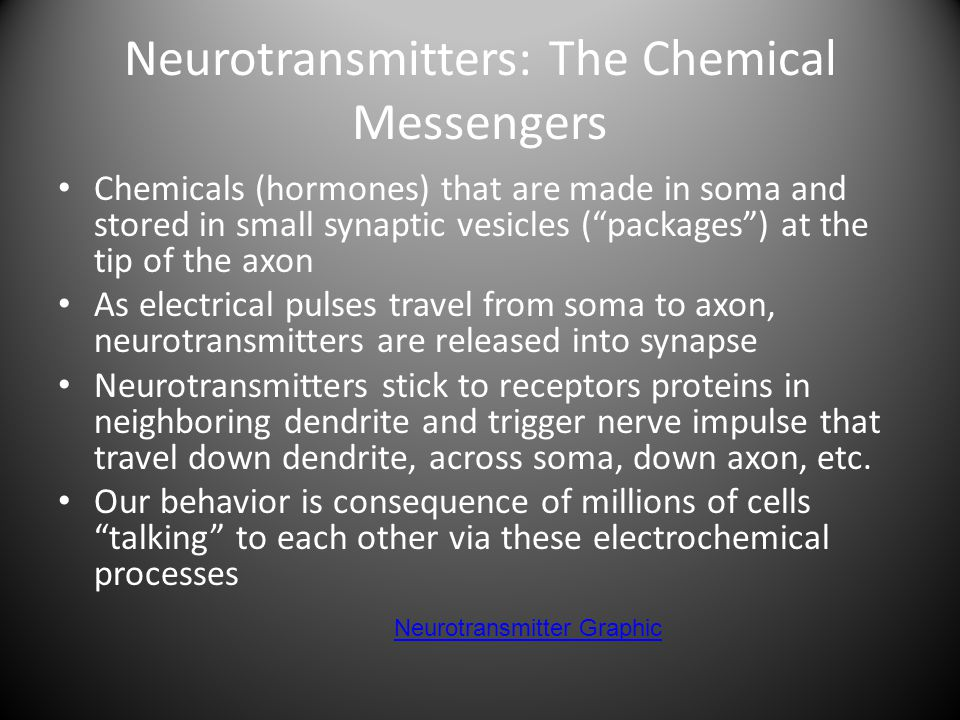 Neurotransmitters: The Chemical Messengers