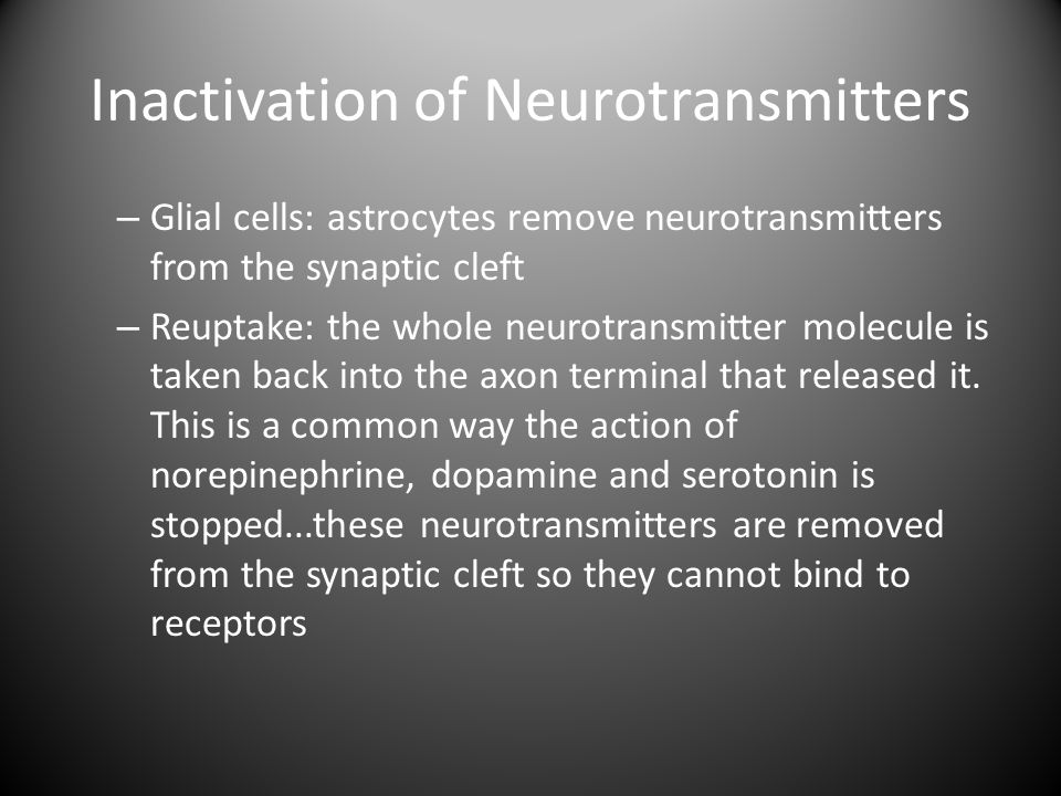 Inactivation of Neurotransmitters