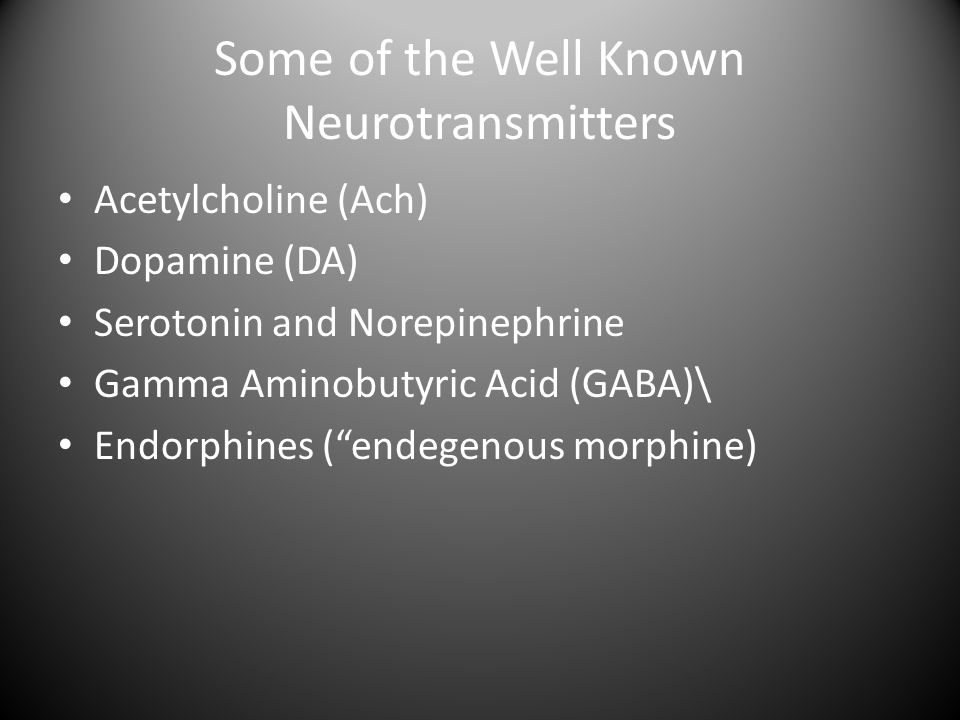 Some of the Well Known Neurotransmitters