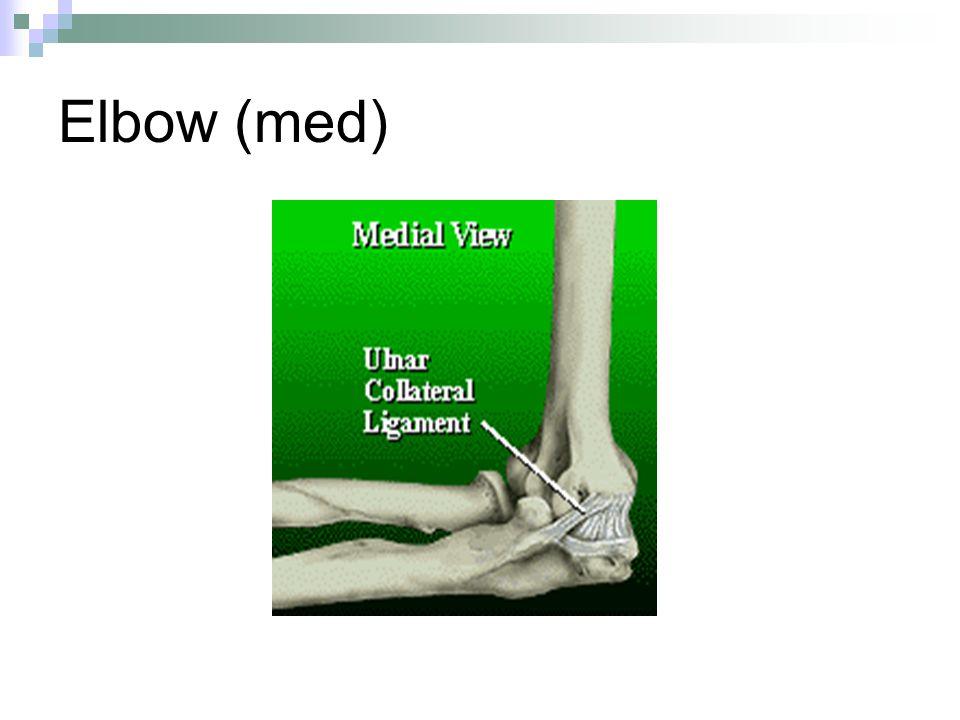 Elbow (med)