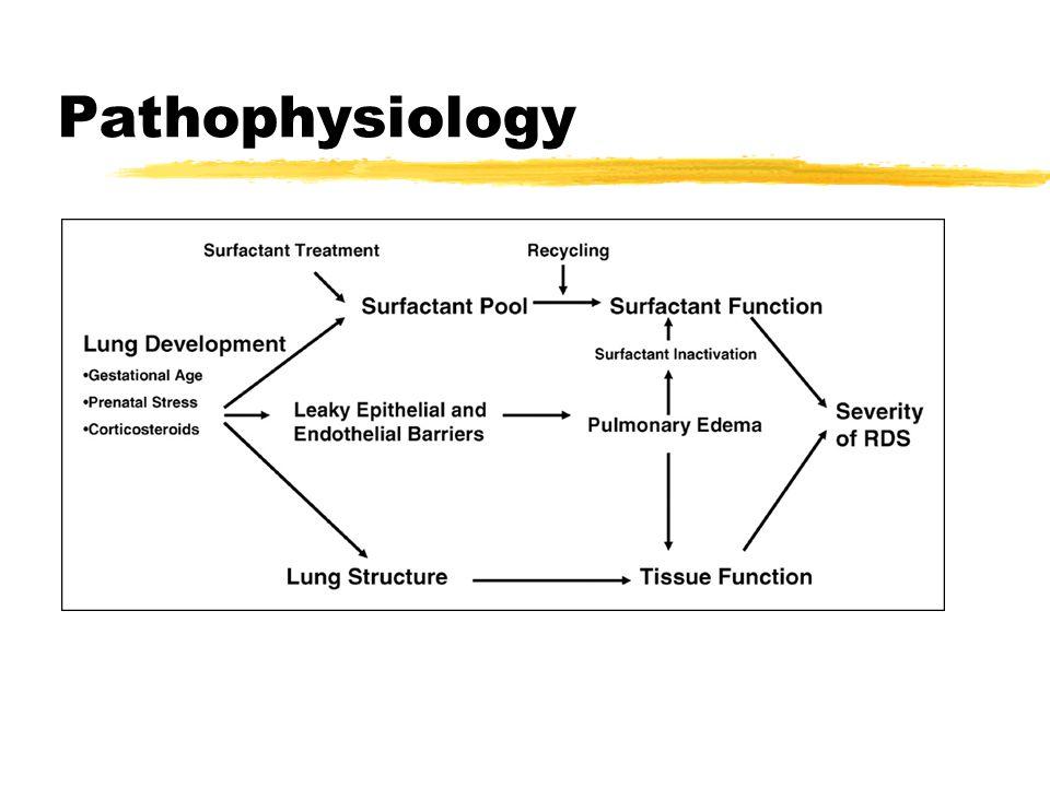 Pathophysiology Hypoxia, acidosis, hypothermia, hypotension