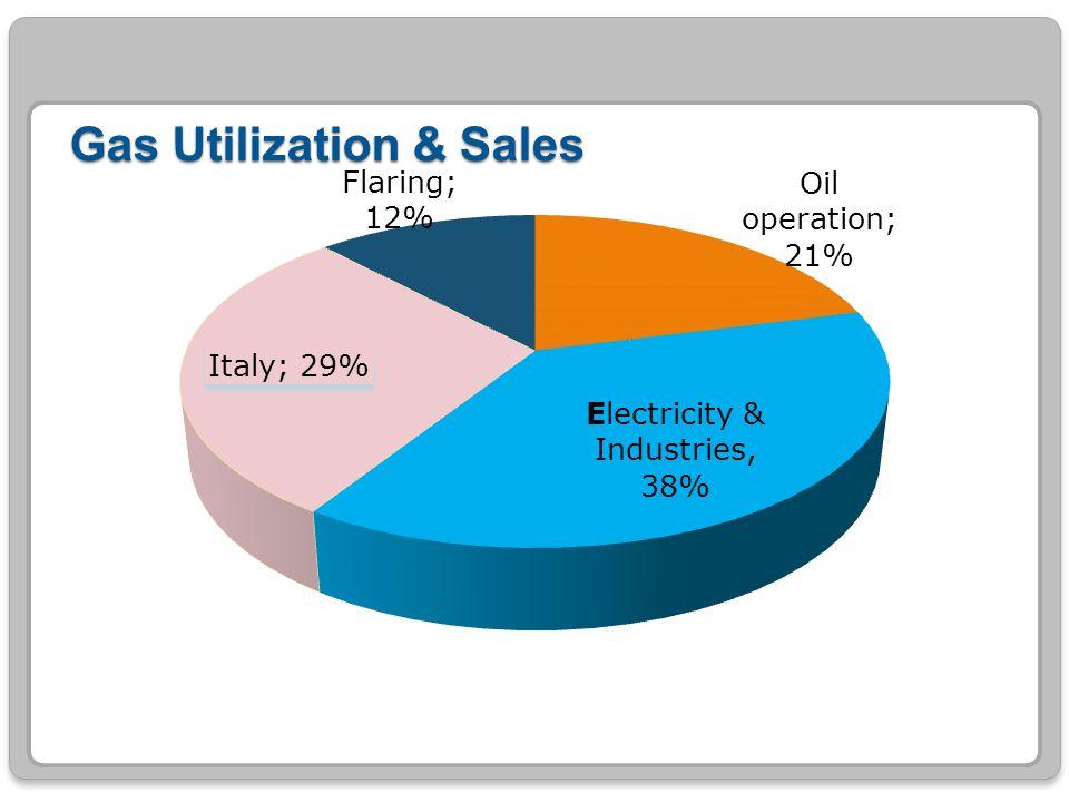 Gas Utilization & Sales